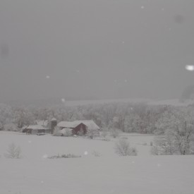 Nam's farm blanketed in snow