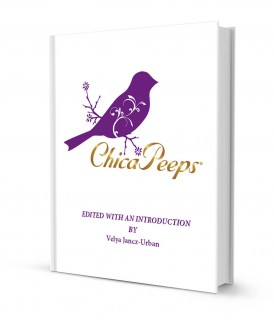 CHIP102ART.BookCover01.jpg